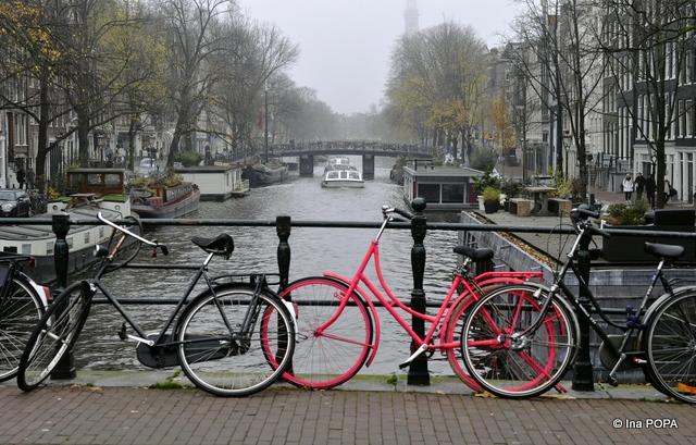 bicicleta roz in orasul gri de toamna