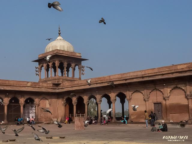 India_Delhi_0041
