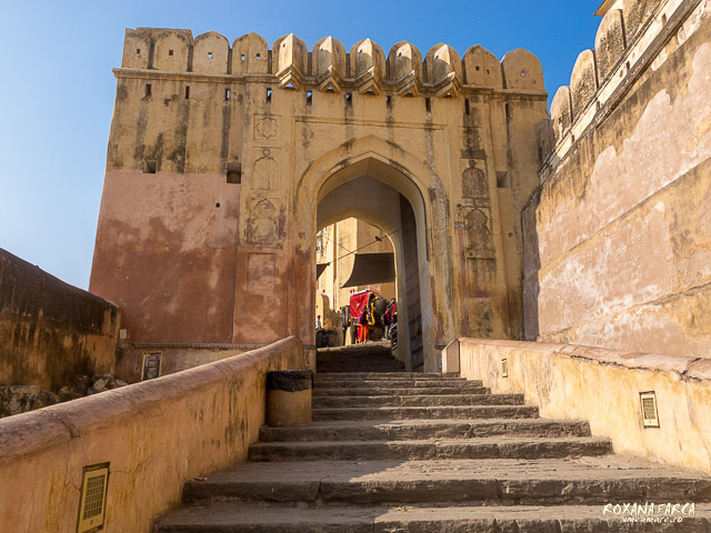 India Amer Fort_0489