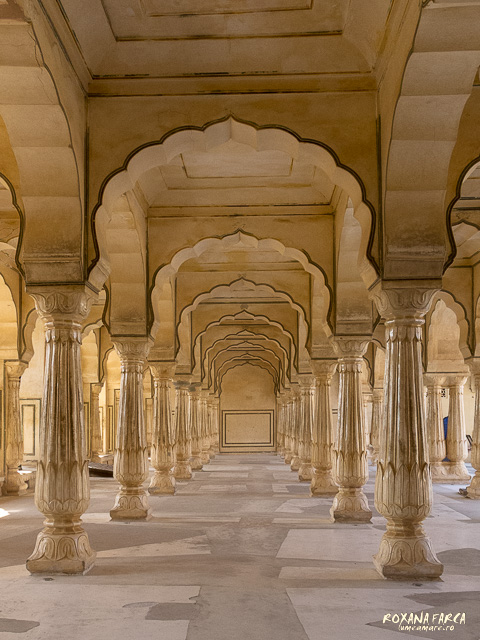 India Amer Fort_0547