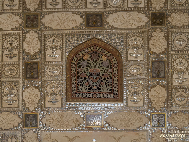 India Amer Fort_0549