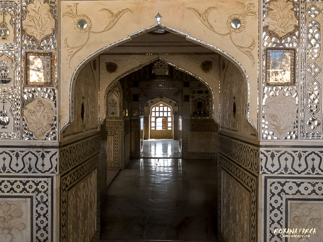 India Amer Fort_0555