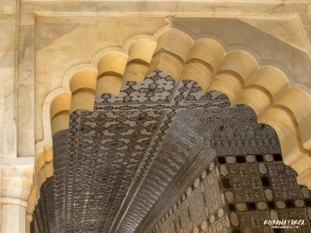 India Amer Fort_0557