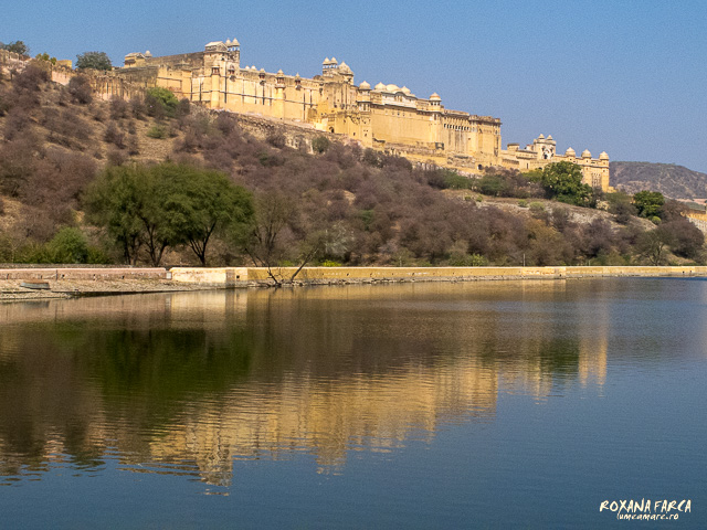 India Amer Fort_0600