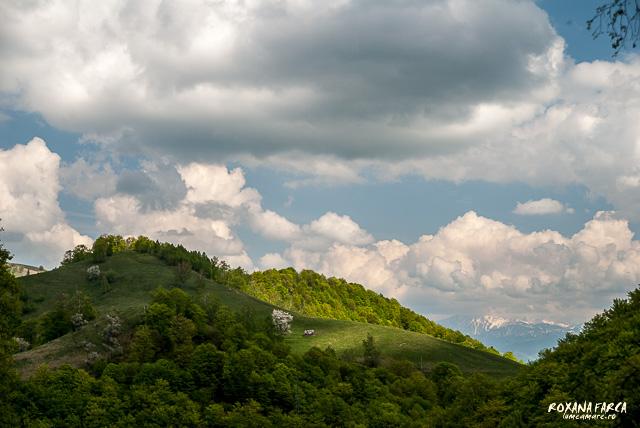 Sibiu si imprejurimi_8455