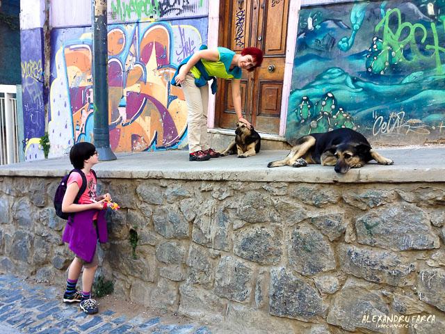 Valparaiso_street_art_IP_3115