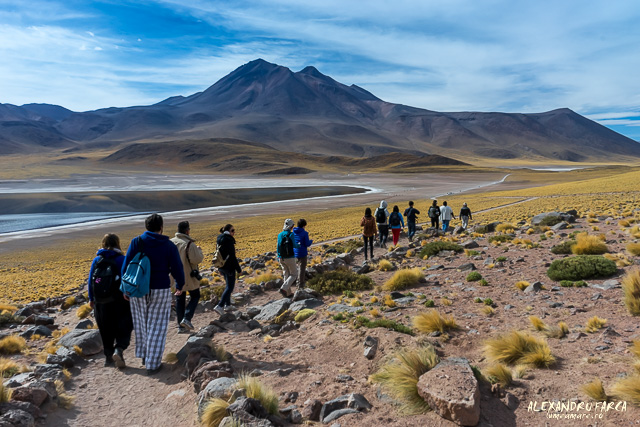 Atacama-01976