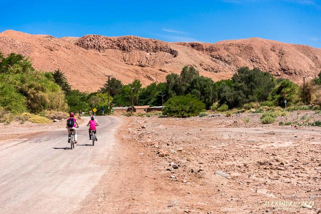 Atacama_pukara-02194