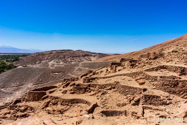 Atacama_pukara-02215
