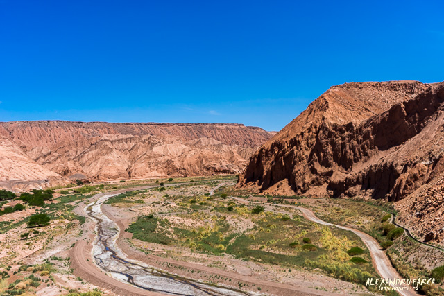 Atacama_pukara-02228