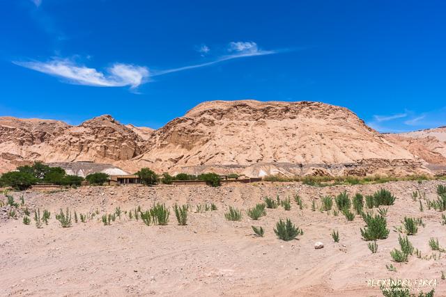 Atacama_pukara-02265