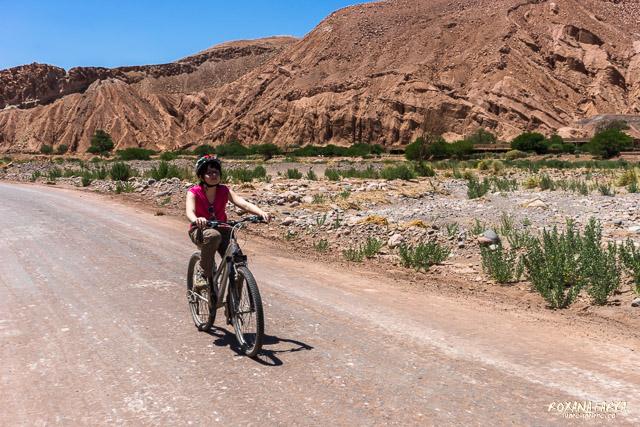 Atacama_pukara-02270
