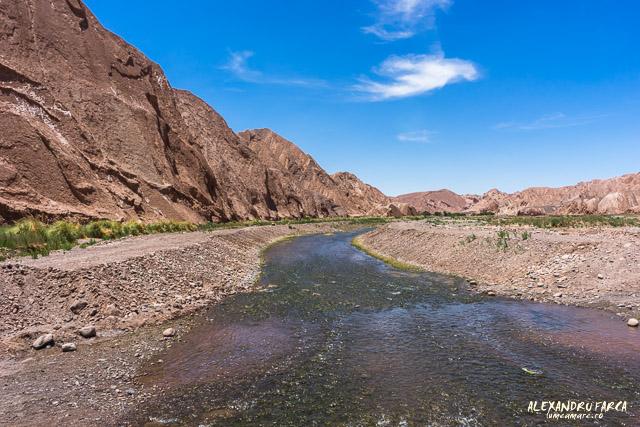 Atacama_pukara-02272