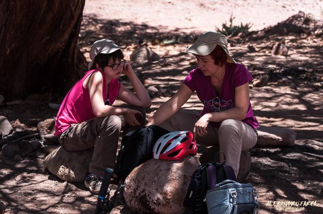 Atacama_pukara-7910