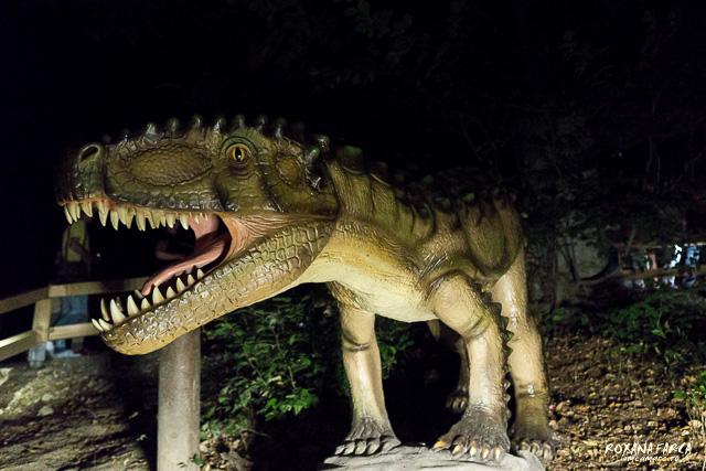 Dino-Parc-Rasnov-07533
