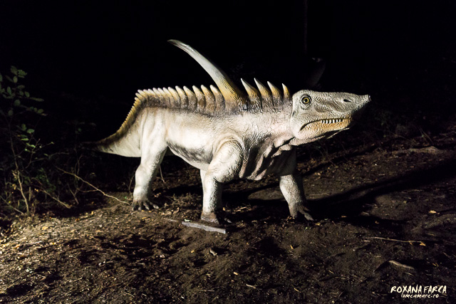 Dino-Parc-Rasnov-07541