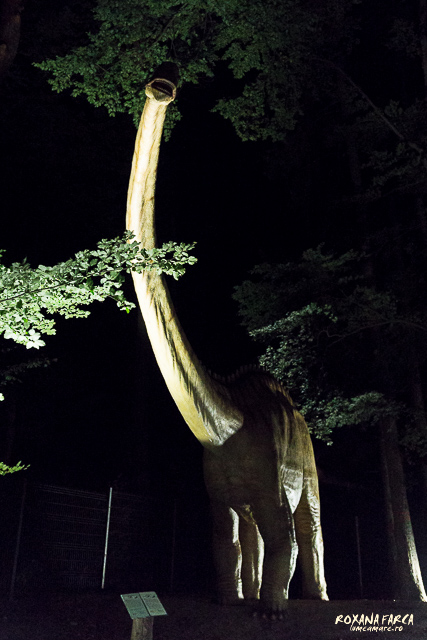 Dino-Parc-Rasnov-07551