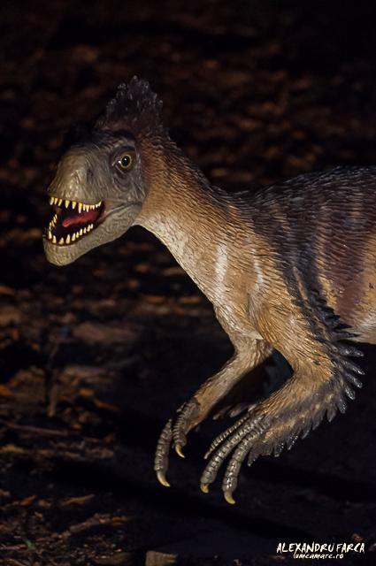 Dino_Park-1271