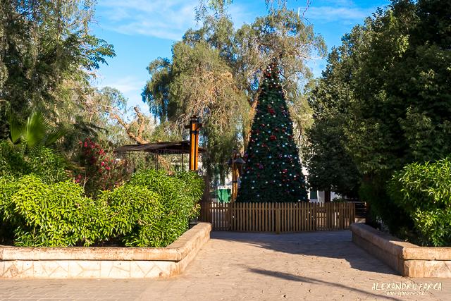 San_Pedro_Atacama_02159