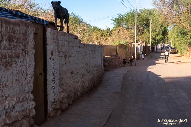 San_Pedro_Atacama_02164