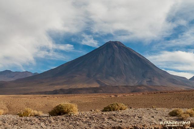 Atacama_Salar de Tara-8216