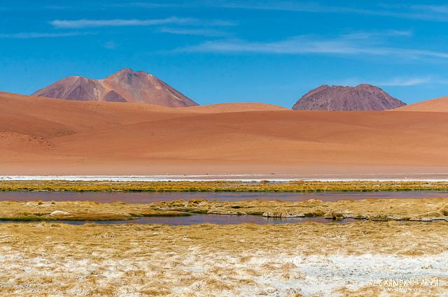 Atacama_Salar de Tara-8316