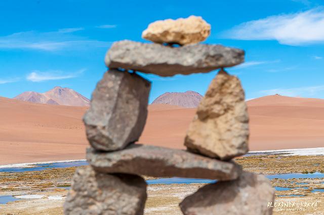 Atacama_Salar de Tara-8336