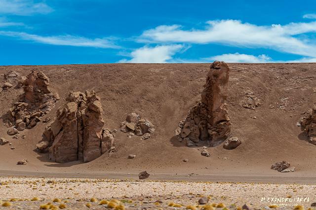 Atacama_Salar de Tara-8368