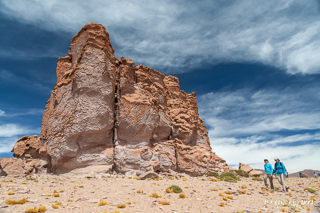 Atacama_Salar de Tara-8381