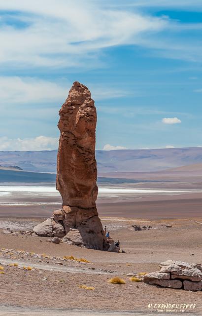 Atacama_Salar de Tara-8404