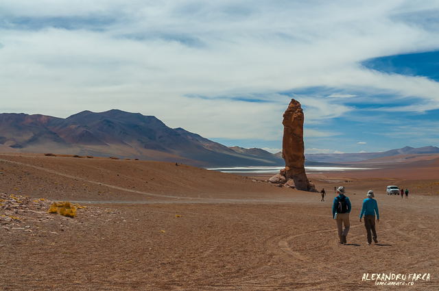 Atacama_Salar de Tara-8410