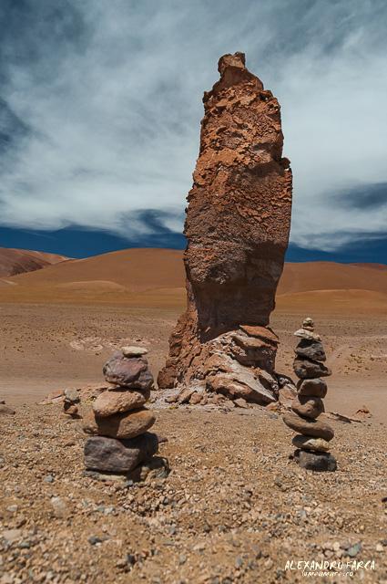 Atacama_Salar de Tara-8435