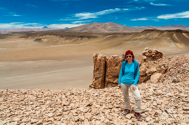 Atacama_Salar de Tara-8506