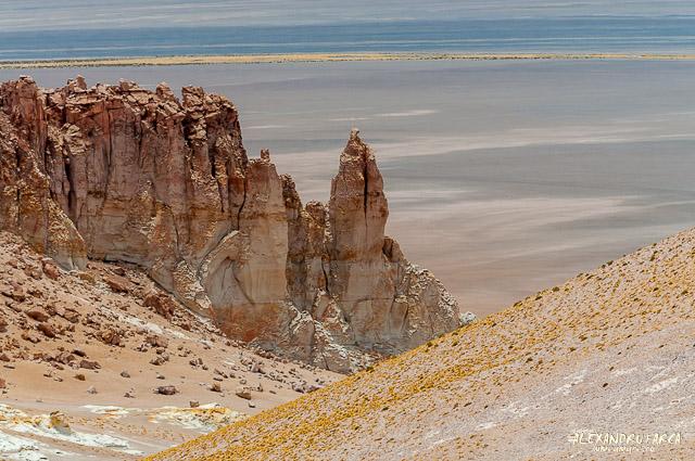 Atacama_Salar de Tara-8513