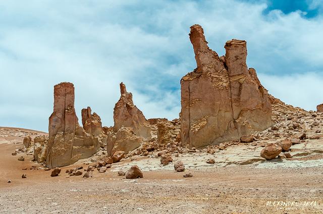 Atacama_Salar de Tara-8558
