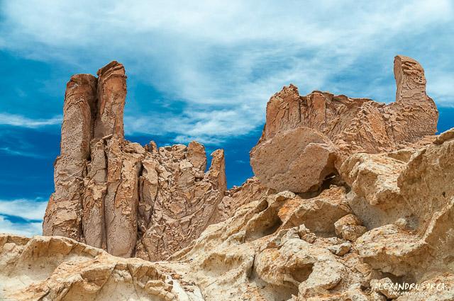 Atacama_Salar de Tara-8587