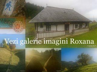 Galerie Fundata Roxana Farca