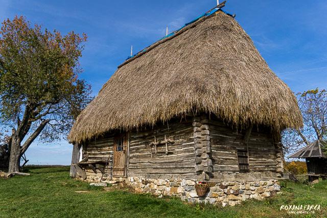 Traditional_Casa_Padurea_Craiului-9546