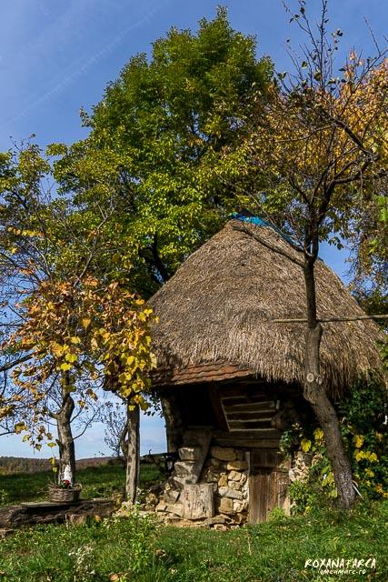 Traditional_Casa_Padurea_Craiului-9564