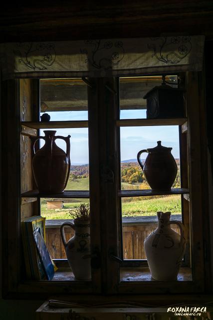 Traditional_Casa_Padurea_Craiului-9577