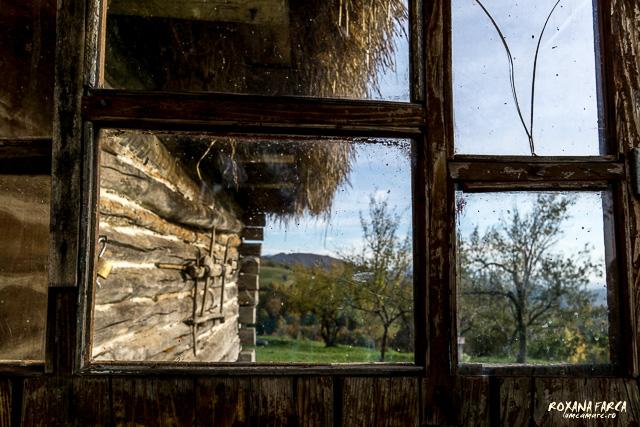 Traditional_Casa_Padurea_Craiului-9589