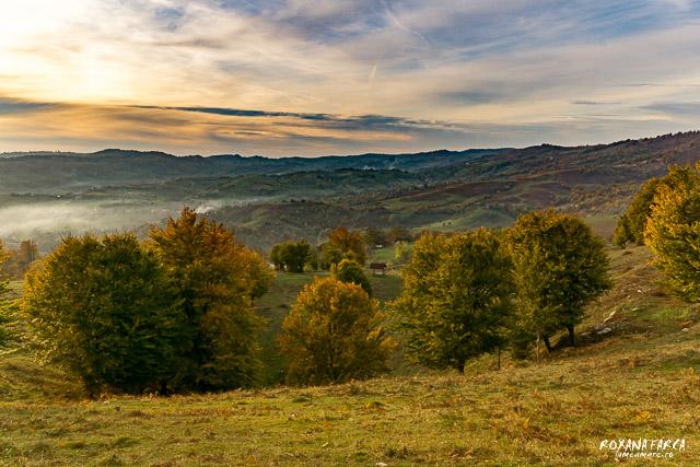 Valea_Rosie_Padurea_Craiului-9613