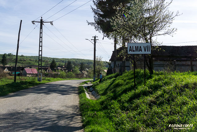 Alma-Vii-0643
