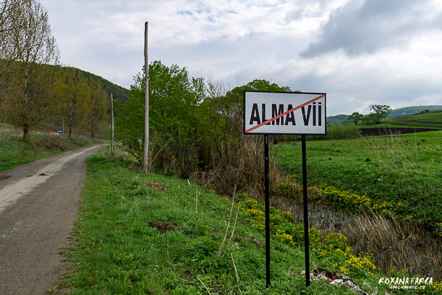 Alma-Vii-0795