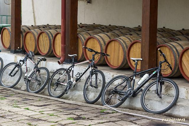 Bike-Wine-0069