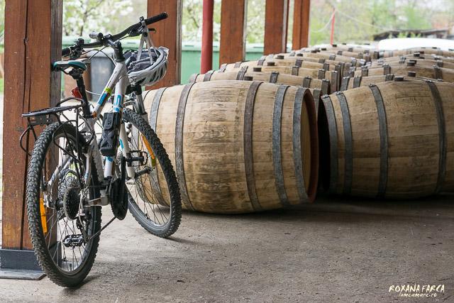 Bike-Wine-0125