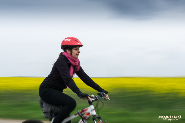 Bike-Wine-0204