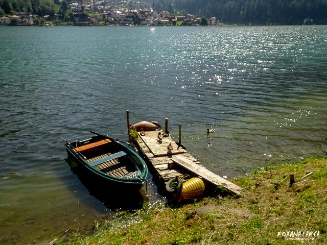 Dolomiti-Alleghe-02866