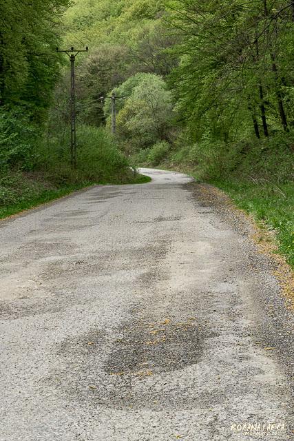Drumul spre Zlagna