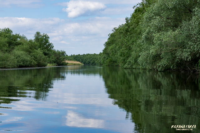 Delta-Dunarii-canotca-1496